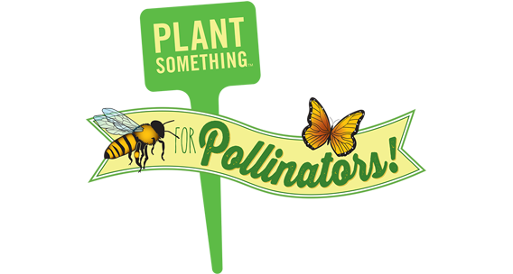 Plant Something for Pollinators