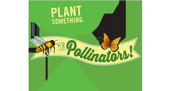 Plant Something for Pollinators