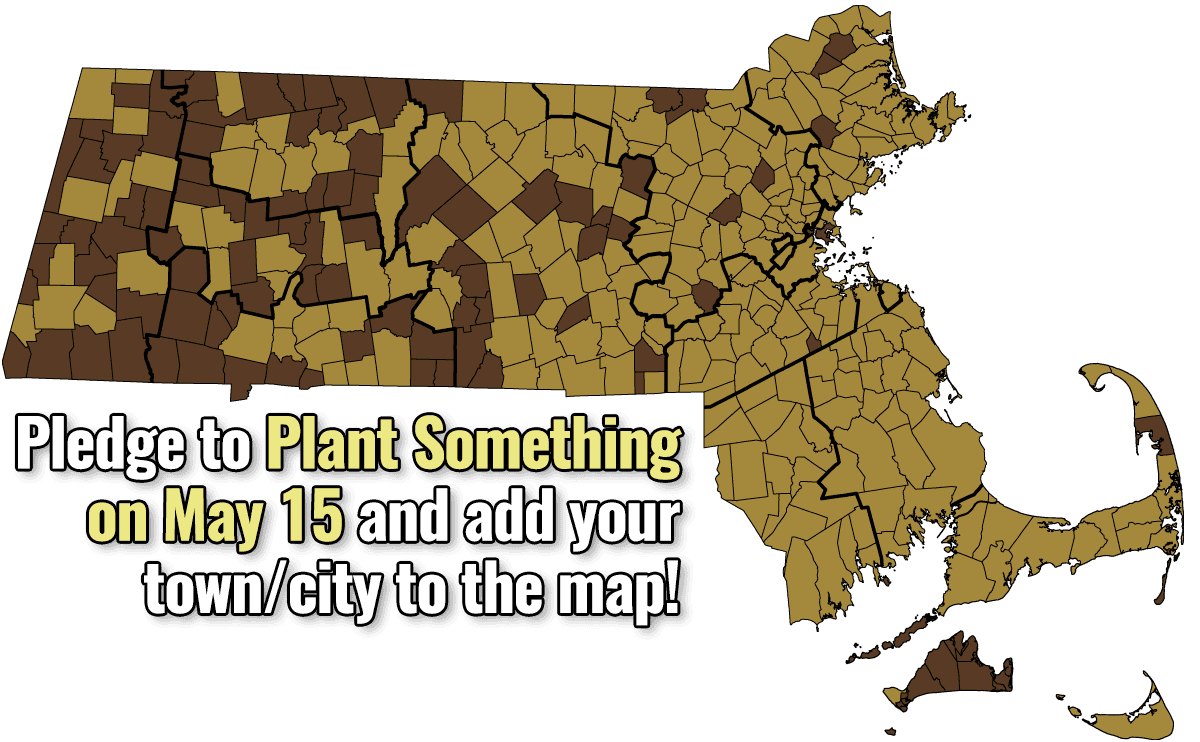 Plant Something on May 15!
