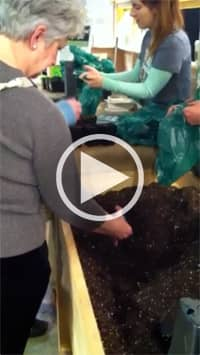 Planting in action! Join us at the Boston flower and garden show and Plant Something!