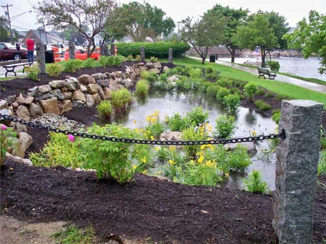 Utilizing a Rain Garden