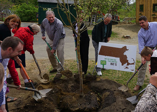 2015 May 15 planting together
