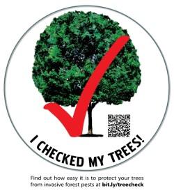 I checked my trees