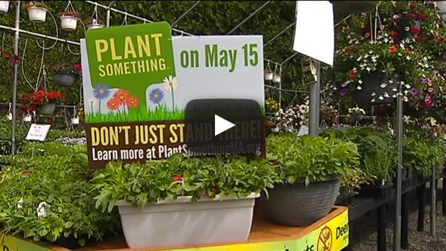 WWLP 22News coverage May 15 Plant Something Day