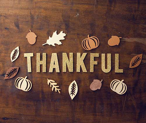Take time to give thanks this week to everything and everyone that you are grateful for in your life. Happy Thanksgiving!