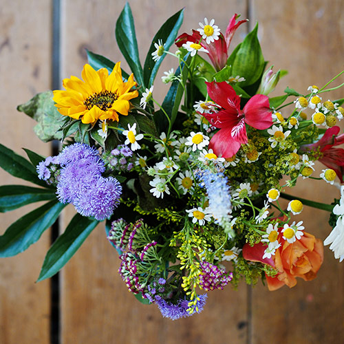 Cut flowers will last longer when kept cool.