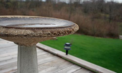 Scrub the birdbath with a solution of nine parts water, one part vinegar.
